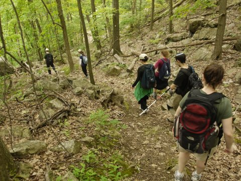Hikers on Fishkill Ridge Trail