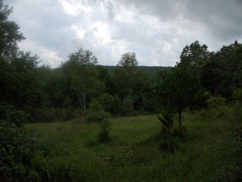Southern view, Ward Pound Ridge Reservation, Westchester County, NY